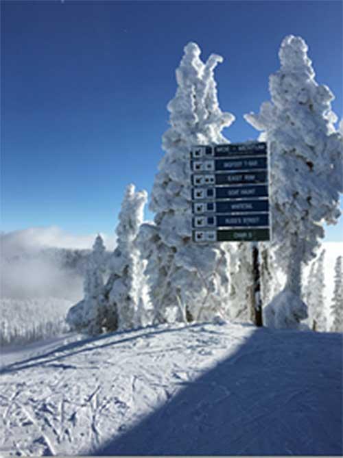 Whitefish Trail Sign