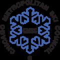 Chicago Metro Ski Council logo